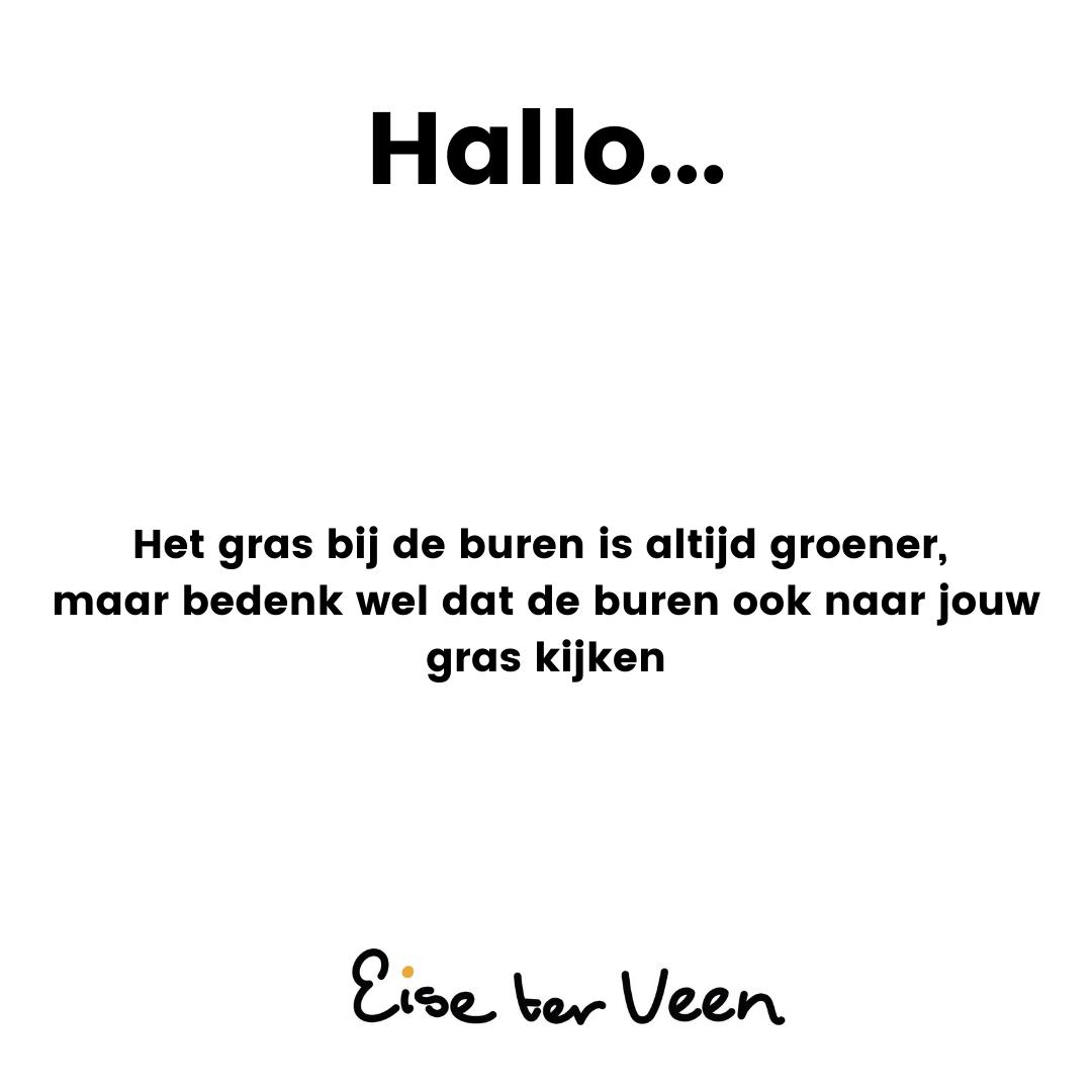 Eise ter Veen - Hallo