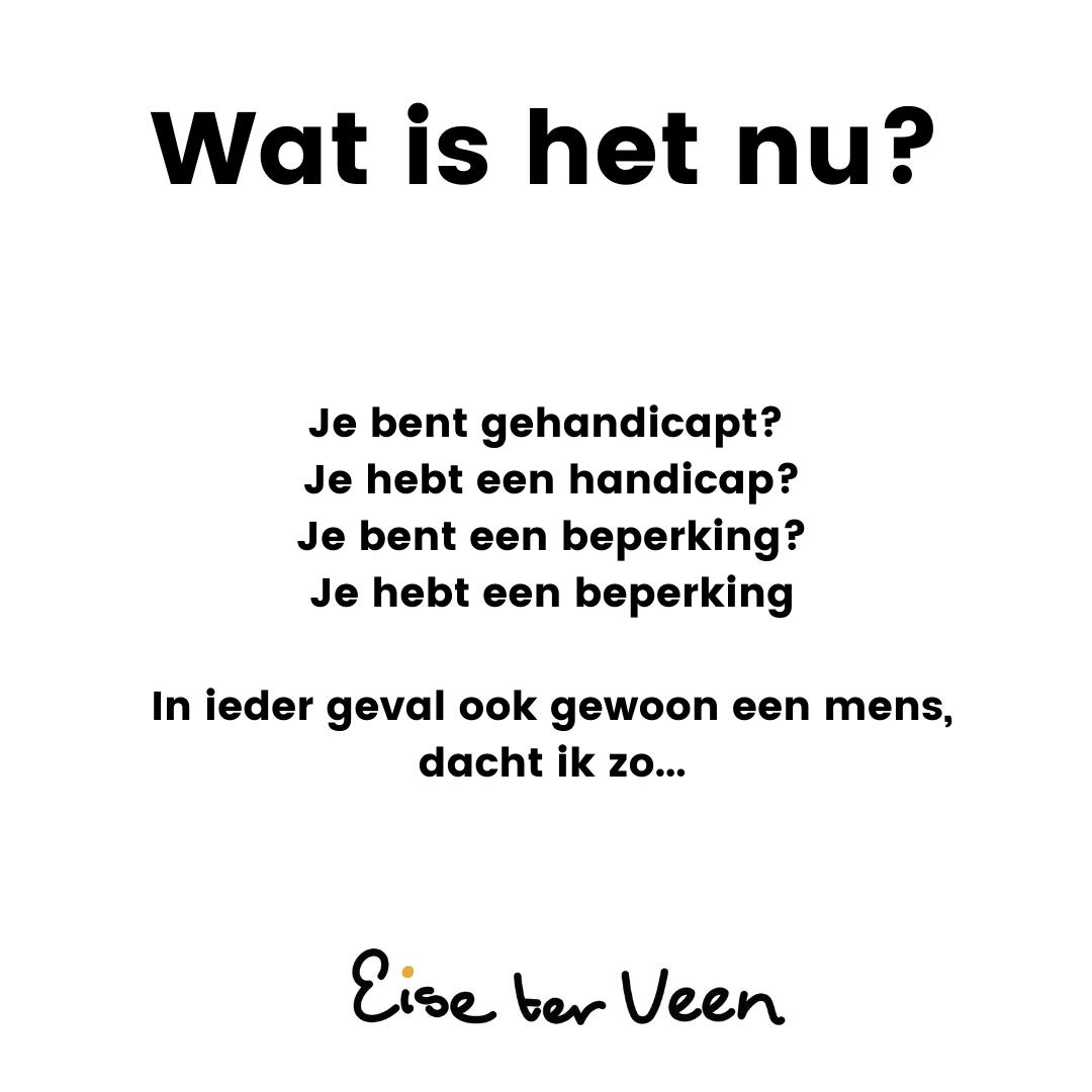 Eise ter Veen - Wat is het nu_